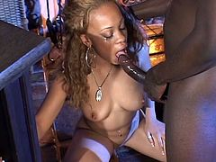 http://img4.sexcdn.net/0w/in/zv_interracial_blowjob.jpg