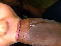 I couldnt believe me eyes but this penis is truth! Now you are able to examine how this so beautiful white girl Thea Marie is sucking and stroking this black giant piece of meat!