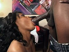 Dick hungry black nympho Storm gets hammered mish by horny stud