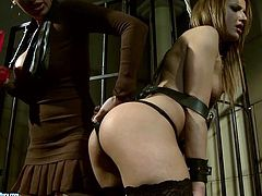 Andy Brown is having fun with Mandy Bright in a basement. Mandy ties Andy up and makes her suck a dildo before poking it in her nice pussy.