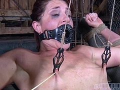 CiCi Rhodes tortures her slaves in the most painful and humiliating ways possible. She uses a device to suck the juice out of her slaves pussy then makes her drink it. She whips her pussy until it is red and covered in welts.