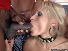 Lusty talented blonde nympho with fit sexy body and great oral skills gives deep throat to young studs with muscled bodies and gets her pierced minge and tight ass fucked hard