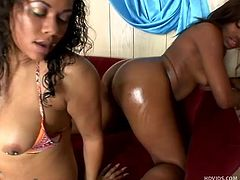 Nothing compares with a big, black oiled ass, well perhaps two are better! Bonita and Dani are two chocolate girl that need to fuck and give us a great show in the mean time. One of the sluts is getting her ass oiled up by the other one and then the go pussy to pussy holding sex toy between them