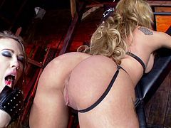 Arousing babes are having fun dominating in wild bdsm lesbian porn session