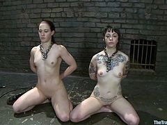 Cheyenne Jewel and Sparky Sin Claire get tied up and blindfolded. After that they lick each others pussies and get toyed.