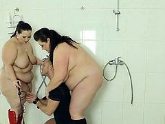 Poor voyeur male has punished by 2 strict chunky ladies