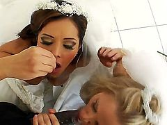 Two cute prostitutes Francesca Le and Julia Ann are sucking huge schlong of their ebony lover Ice Cold on the eve of wedding evening. Everything is so cool and amazing.