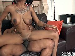 Exotic Chick Getting Impaled by a Huge Black Prong
