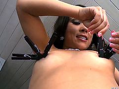 If there is no pain, Talita Brandao is not happy. She is showing off her round tits and hard nipples in front of the camera and posing with pleasure like never before.