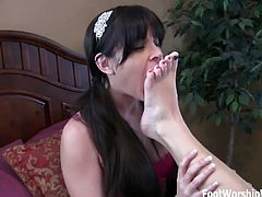 Check out this hot feet licking compilation, where busty sluts are kissing and eating their sweet feet!
