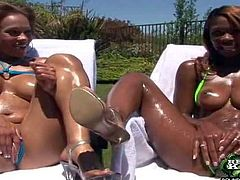 Turned on black bitches with big firm gazongas and smoking hot oiled bodies in tease and polish their shaved minges in backyard on a sunny day in point of view