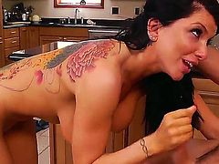 Busty brunette hottie Romi Rain loikes having hunk  Johnny Castle deep drilling her holes
