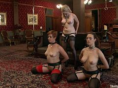 Looking for a hot bondage clip to have fun with? Here we have what you're looking for as these ladies sucks and fuck their master while being tied up or cuffed.