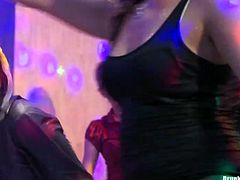She looks super hot and appetizing with her impressive juicy boobs. Enjoy hot Tainster party hardcore porn tube video right here and right now.