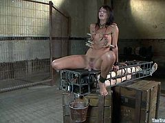Gagged Cassandra Nix gets clothespinned and fucked