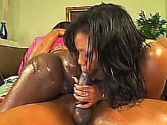 Awesome hot ebony cute