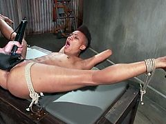 Short-haired ebony bitch Nikki Darling allows some guy to tie her up and play with her cunt indoors. The guy rubs Nikki's black snatch with toys and then fucks her hot depths with a big dildo.