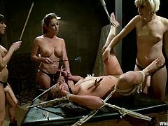 Sexy babe gets tied up and clothespined by three chicks. Later on she also gets her ass drilled with a strap-on.