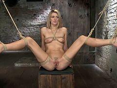 Sweet, innocent and fragile Amanda got herself in a very difficult situation. She's now all tied up with rope and an executor plays with her pussy and her mind. The blonde is ball gagged and hangs above the floor as the executor plays wit her pussy using some black gloves and a tool. Keep her some company!