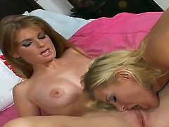 Blonde Nikki with massive breasts and trimmed beaver touches her bush and jugs playfully