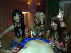 A few beautiful and sexy Japanese sluts are having fun with a guy. They lick, rub and suck his manhood and seem to enjoy it much.