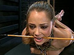 Kristina Rose is getting her punishment in this BDSM scene. She gets tied up by Maestro Stefanos and likes the way he plays with her nice juicy pussy.