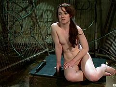 See this cute girl called AnnaBelle Lee and see how she gets her pussy toyed and tortured while tied in ropes in this BDSM video.