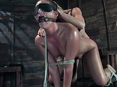 Poor brunette gets blindfolded and whipped by stunning Felony. Later on she gets her vagina and ass stuffed with dildos and a butt hook.