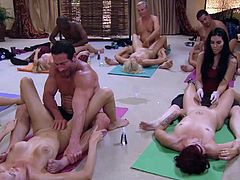 All these couples learn how to do a proper handjob. The lessons can be used for both men and women.