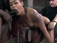 Punk slut Skin thinks she's a tough bitch but these executor show her what she's really made of. They've tied her hard on a metal frame and take turns with her mouth and ass. First the black hunk fills her mouth while the white one drills her ass and then they switch places. That should warm her up for what's coming