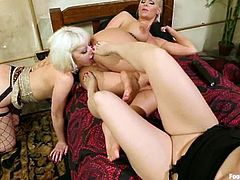 Cherry Torn, Phoenix Marie and Sarah Blake kiss and fondle each other and get horny. Then they pound each other's vags with their feet and seem to enjoy it much.