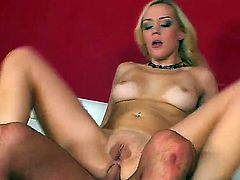 Extremely hot blonde porn star from Germany Annette Schwarz demonstrates wild sex