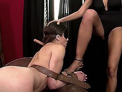 Cruel lesbian blonde slut Clara G. tied up her young girlfriend Tiffany Doll in doggy pose on armchair and rudely punishing her by fucking her asshole with whip handle.
