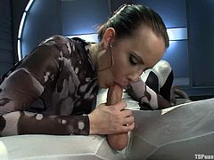 Sexy chick gives an amazing blowjob to a tranny. After that she gets fucked hared and deep from behind.