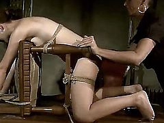 Tall dominating slut Issa Bella is punishing her tied up and helpless girlfriend Mandy Bright and rudely humiliating her.