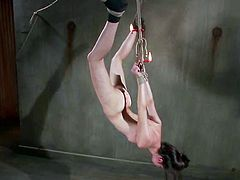 Cute dark-haired chick Kristine Kahill gets bound and hung up by some guy in a basement. The man pleases the slut with fingering and then beats her with a stick and rubs her twat with a toy.