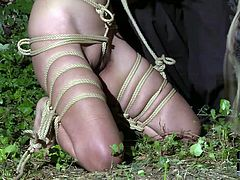 Master treats his sexy Asian slave girl with extreme bondage. Delicious naked bitch gets tied up and suspended in air. Watch how her body swings from side to side.
