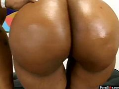 Don't miss a chance to gain your portion of pleasure along with Pornstar sex clip. Kinky black ladies go nuts. Their boast of their rounded big asses, smack them passionately and switch to licking each other's wet cunts for orgasm. Booty curvy ebony chicks are surely voracious lesbos, who will make you jizz in a flash.