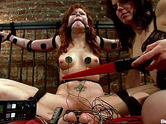 Watch how the hot redhead Brooklyn Lee gets totally dominated and tortured by Bobbi Starr in this lesbian bondage video.