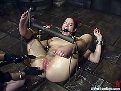 Redhead bitch Dana Dearmond gets tortured and fucked in a cellar