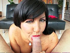 Hot brunette MILF stands on her knees in front of the guy. She sucks his dick and licks balls. This bitch also gets her mouth filled with cum.