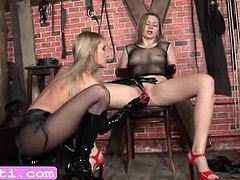 Charming BDSM lesbians toy pussies