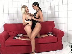 Two brazen brunette and blonde babes lick each other's big natural tits and polish each other's soaking cunts with their tongues. It looks hypnotizing!