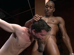 A kinky twink gets his fair share of fucking black cock in this perverted BDSM scene right here, check it out, yo! It's fucking hot!