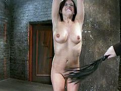 Special nipple torture weights are used on Tessa Taylor before tying her up and whipping her pussy before toying it.