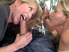 Three MILFs are on the couch bragging their sexual exploits. They get into an argument on who is the biggest slut and the only way to have a winner is to show who could do better than the rest. With the help of a cock, the trio suck and fuck a cock to see who is the biggest slut.