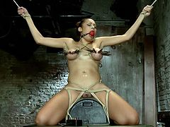 Those laundry pliers on her big, superb boobs, the rodeo sex machine under her pussy that's rubbing her hard and the ropes that constrict her should make this babe scream, but that's what the ball gag for! Check her out and enjoy what the executor does to her superb body.