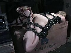 Stunning Fayth Deluca gets tied up to the post. The guy toys her pussy with a vibrator first and then she gets her pussy drilled with the fucking machine.