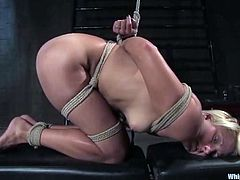 Horny blonde chick in the stocks gets humiliated. She gets her pussy and ass fucked deep with a strap-on by Maitresse Madeline.