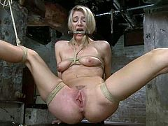 Cute blonde Amanda Tate gets bound in a basement and moans sweetly while having a toy in her juicy vag.